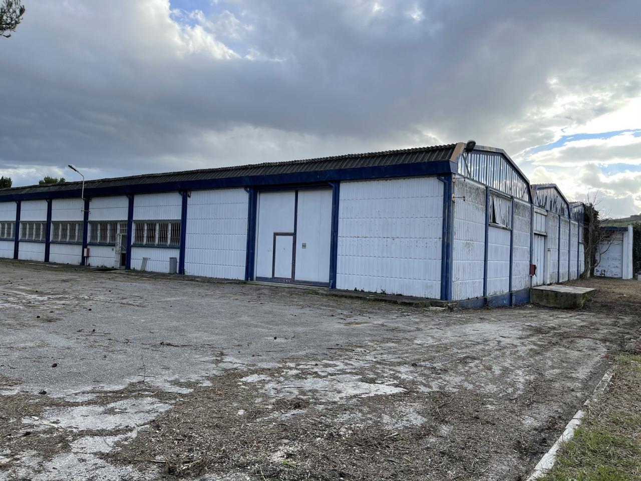 Ancona zona Baraccola vendiamo capannone con ampia area esterna privata